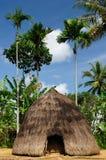 Village principal de chasseur, Indonésie Photos stock
