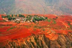 Village on red land Royalty Free Stock Image