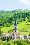 Village of Ribeauville Stock Photography