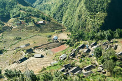 Village and Rice Paddy fields. Sapa. Vietnam Stock Photo