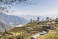 Village with rice terraces Royalty Free Stock Photos