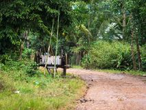 Village road in Myanmar Royalty Free Stock Photography