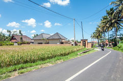Village Road Stock Images