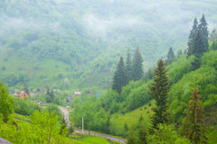 Village Road Surrounded With Summer Nature Royalty Free Stock Photography