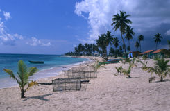 Village's beach Saona island Dominican republic Royalty Free Stock Photos