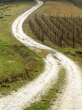 The Village's Road. The Road in the Village Royalty Free Stock Photography