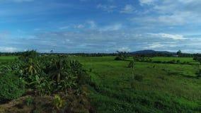Village Sabah Maaysia de Tuaran clips vidéos