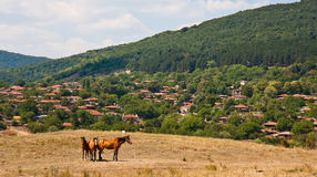 Village Scene. View of Zheravna village in Bulgaria Stock Images