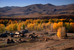 Village in Sinkiang royalty free stock photo