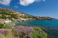 The Village Skala in Kefalonia, Greece. The town Skala in Kefalonia, Greece. At the sea, with wild thyme in the foreground Royalty Free Stock Photo