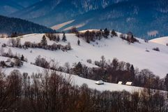 Village on snowy hill in winter. Lovely countryside scenery in mountainous region at sunrise Stock Image