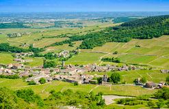 The village of Solutré, Pouilly,  and wine yard's, Burgundy, Fr Stock Image