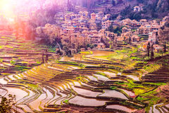 Village in South China with traditional Houses and Rice Terraces Royalty Free Stock Images