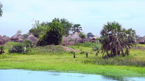 Village in South Sudan on the Nile stock video footage