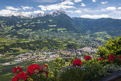 Village in South Tirol. With flowers on a sunny day in summer Stock Photography