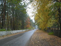 Village street in autumn Royalty Free Stock Photography