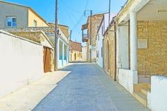The village street stock image