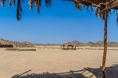 The village and the structure of the Bedouins in the desert royalty free stock images