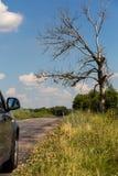 Village summer road in Ukraine Stock Image
