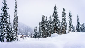 The village of Sun Peaks nestled in the mountains of Shuswap Highlands. Of central British Columbia, Canada in a Winter Landscape with Snow Covered Trees royalty free stock photos
