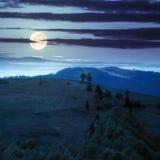 Village sur le pré de flanc de coteau avec la forêt en montagne la nuit Photo stock