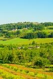 Village Royalty Free Stock Photos
