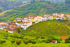 Village Surrounded by Vineyards Stock Images