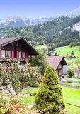 Village in the swiss Alps. In a valley with rural houses, in the background are mountains on a cloudy day.It´s a vertical picture Royalty Free Stock Image