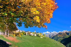 Village in Switzerland Royalty Free Stock Photos