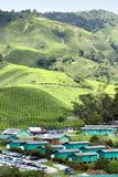 Village at Tea Plantation 02 Royalty Free Stock Image