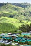 Village at Tea Plantation 02 Royalty Free Stock Image