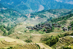 Village and terraced fields Royalty Free Stock Images