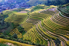 Village and Terraces Royalty Free Stock Photo