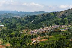 Town amidst tea gardens in India royalty free stock image