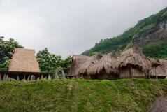 Village traditionnel Bena Indonésie Photo libre de droits