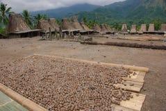 Village traditionnel Bena sur l'île de Flores Photo libre de droits