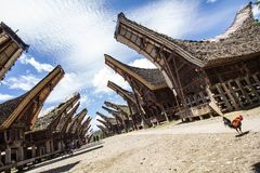 Village traditionnel de Tana Toraja Photographie stock libre de droits