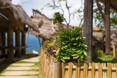 Village traditionnel en Tana Toraja, Sulawesi du sud, Indonésie Le bateau de Tipical a formé des toits et le bois a découpé des g photos libres de droits