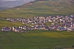 Village of Trittenheim in the vineyards at the river Stock Photos