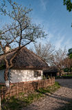 Village ukrainien au printemps Photo stock