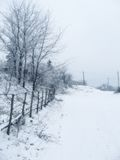 Village under snow Stock Image