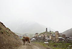 Village Ushguli in Upper Svaneti in Georgia Stock Image
