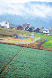 Village in valley Stock Images