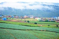 Village in valley Stock Photos