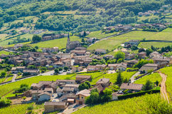 The village of Vergisson and wine yard's, Burgundy, France Royalty Free Stock Image