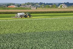 Village view with Cabbage field and injecting farmer. The Netherlands, province of south Holland, Heerjansdam municipality Zwijndrecht: in the Zwijndrechtse Royalty Free Stock Images
