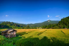 Village. Villang around angkhang chiang mai thailand Stock Images