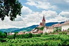 Village and Vineyard Stock Image