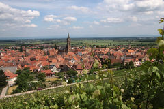 Village with vineyards Stock Photography