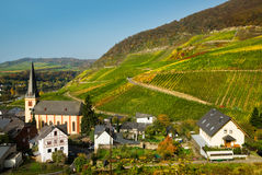 Village and vineyards royalty free stock photography